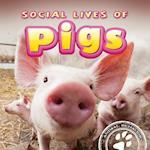 Social Lives of Pigs af Elliot Riley