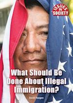 What Should Be Done About Illegal Immigration? (Issues in Society)