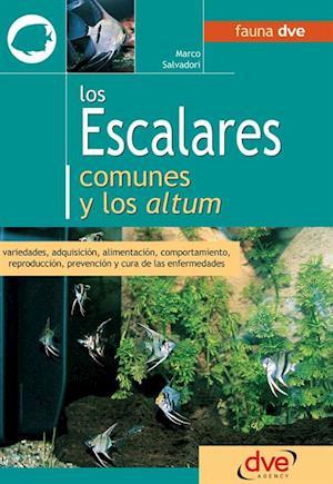 Los escalares comunes y los altum af Marco Salvadori