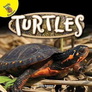 Bog, paperback Turtles af Darla Duhaime