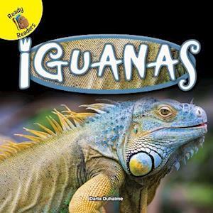 Bog, paperback Iguanas af Darla Duhaime