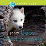 More Baby Wild Animals (Kids Own Nature Book)