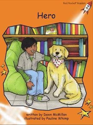 Bog, paperback Hero af Dawn McMillan