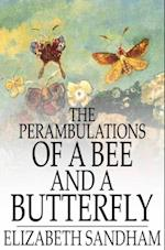 Perambulations of a Bee and a Butterfly af Elizabeth Sandham