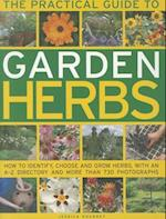 The Practical Guide to Garden Herbs af Jessica Houdret