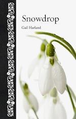 Snowdrop (Botanical)