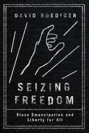 Seizing Freedom af David Roediger