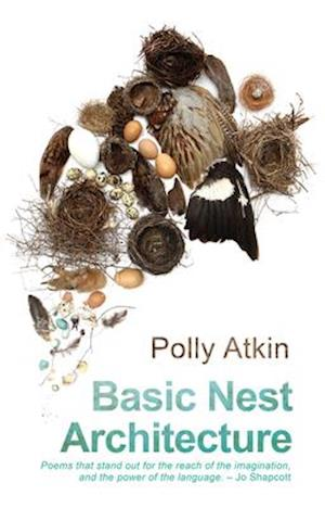 Bog, paperback Basic Nest Architecture af Polly Atkin