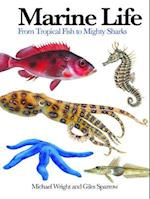 Marine Life (Mini Encylopedia)