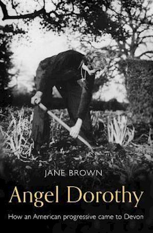 Bog, hardback Angel Dorothy af Jane Brown