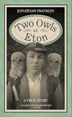 Two Owls at Eton