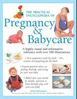 The Practical Encyclopedia of Pregnancy & Babycare af Alison Mackonochie