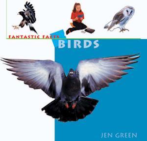 Bog, paperback Birds af Dr Jen Green
