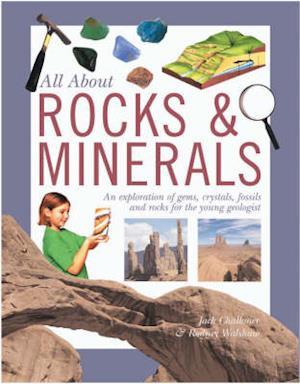 Bog, paperback Rocks and Minerals af Rodney Walshaw