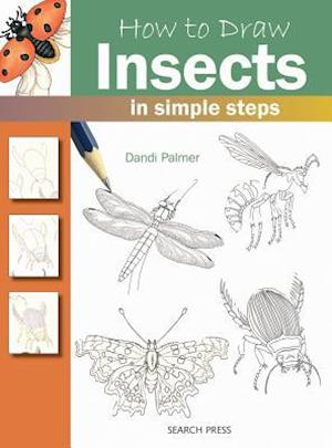 How to Draw Insects af Dandi Palmer