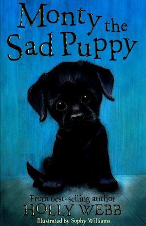 Bog, paperback Monty the Sad Puppy af Holly Webb