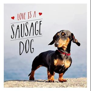 Bog, hardback Love is a Sausage Dog af Charlie Ellis