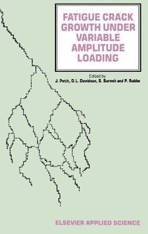 Fatigue Crack Growth Under Variable Amplitude Loading af Petit