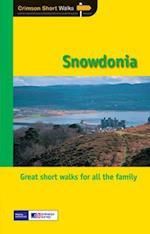 Short Walks Snowdonia af Terry Marsh