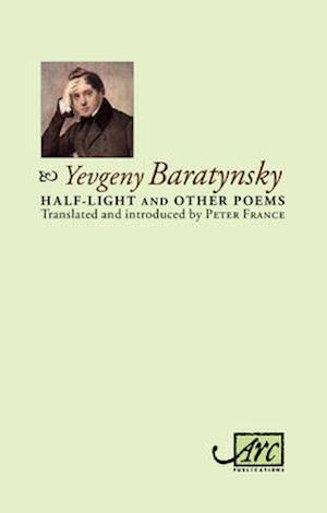 Bog, hardback Half-Light and Other Poems af Peter France