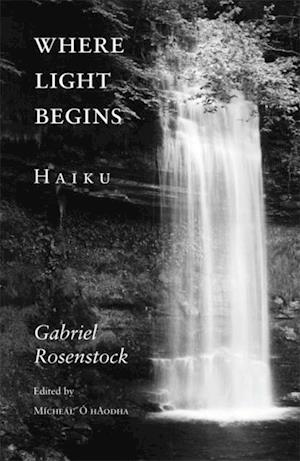 Where Light Begins af Gabriel Rosenstock