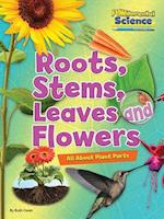 Fundamental Science Key Stage 1: Roots, Stems, Leaves and Flowers: All About Plant Parts