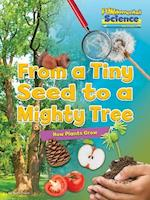 Fundamental Science Key Stage 1: From a Tiny Seed to a Mighty Tree: How Plants Grow