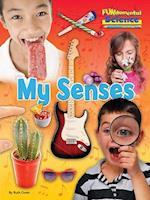 Fundamental Science Key Stage 1: My Senses