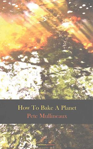 Bog, paperback How to Bake a Planet af Pete Mullineaux