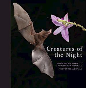 Creatures of the Night af Joe Mcdonald