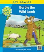 Barbie the Wild Lamb (Joy Cowley Club Set 1)