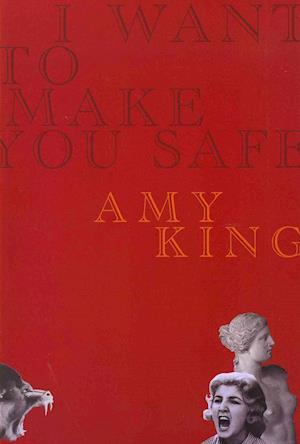 I Want to Make You Safe af Amy King