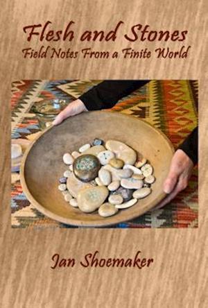 Bog, paperback Flesh and Stones af Jan Shoemaker