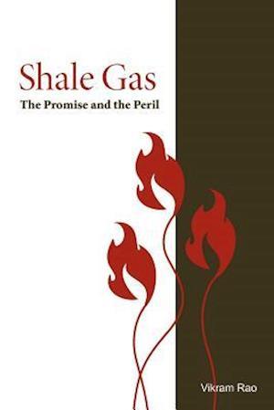 Shale Gas af Vikram Rao