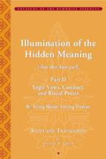 Illumination of the Hidden Meaning