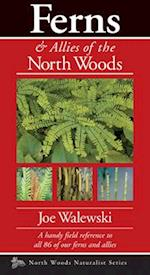 Ferns of the North Woods (North Woods Naturalist)