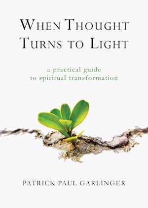 Bog, paperback When Thought Turns to Light af Patrick Paul Garlinger