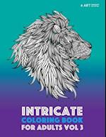 Intricate Coloring Book for Adults Vol 3