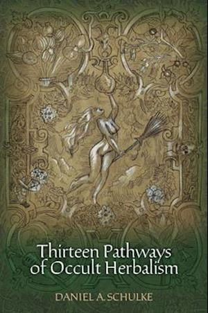 Bog, paperback Thirteen Pathways of Occult Herbalism af Daniel A. Schulke