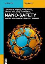 Nano-Safety (De Gruyter Textbook)