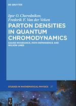 Parton Densities in Quantum Chromodynamics (De Gruyter Studies in Mathematical Physics, nr. 37)