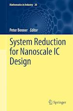 System Reduction for Nanoscale IC Design (Mathematics in Industry, nr. 20)