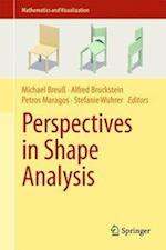 Perspectives in Shape Analysis (Mathematics and Visualization)