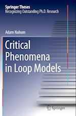 Critical Phenomena in Loop Models (Springer Theses)