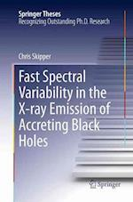 Fast Spectral Variability in the X-Ray Emission of Accreting Black Holes (Springer Theses)
