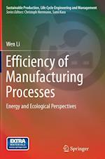 Efficiency of Manufacturing Processes (Sustainable Production Life Cycle Engineering and Managemen)