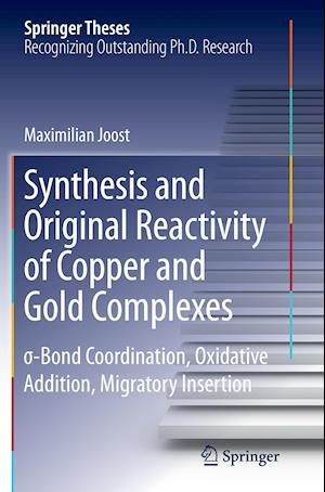 Bog, paperback Synthesis and Original Reactivity of Copper and Gold Complexes af Maximilian Joost