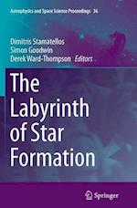 The Labyrinth of Star Formation (Astrophysics and Space Science Proceedings, nr. 36)