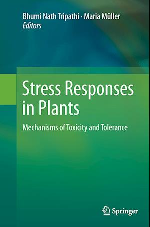 Bog, paperback Stress Responses in Plants