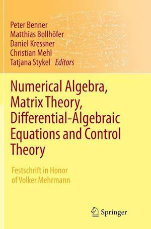 Bog, paperback Numerical Algebra, Matrix Theory, Differential-Algebraic Equations and Control Theory af Peter Benner